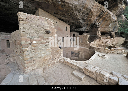 Spruce Tree House, cliff dwelling of native Americans, about 800 years old, Mesa Verde National Park, Colorado, - Stock Photo