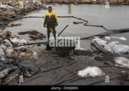 Cleanup crews fill bags with oil-absorbent material after a collision between a bulk carrier and the barge near - Stock Photo