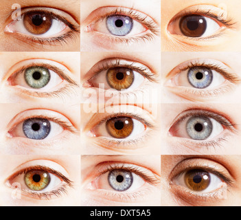 Extreme close up of digital composite of eyes - Stock Photo
