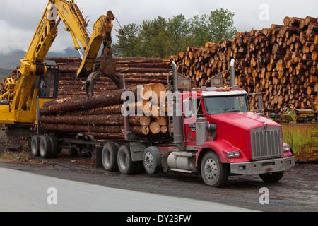 Forwarder Loading Sitka Spruce Logs Harvested At Chiniak Onto A Logging Truck, Kodiak Island, Southwest Alaska, - Stock Photo