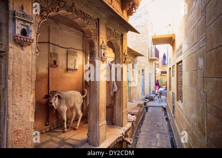 India, Rajasthan, Jaisalmer, Old Town - Stock Photo