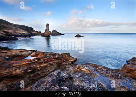 Rock and Spindle on the Fife Coast near St, Andrews, Fife, Scotland, United Kingdom, Europe - Stock Photo