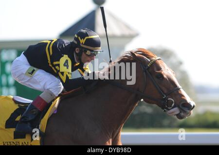 Lexington, KY, USA. 12th Apr, 2014. Aoril 12, 2014: Judy the Beauty and jockey John Velazquez win the G1 Madison - Stock Photo