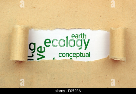 Ecology text in paper hole - Stock Photo
