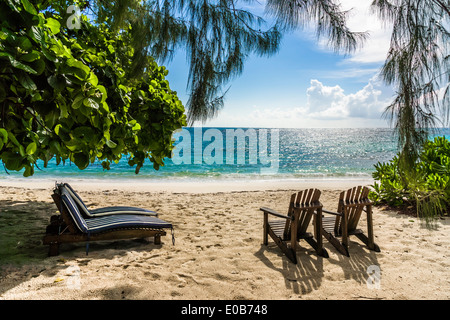Seychelles, Northern Coral Group, Denis Island, Beach and sun loungers - Stock Photo