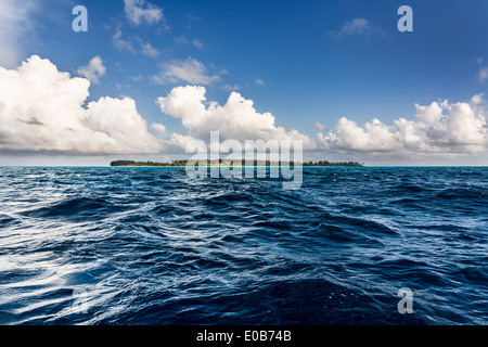 Seychelles, Northern Coral Group, Denis Island - Stock Photo