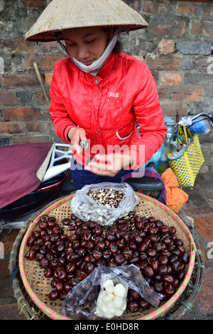 Vietnamese  woman opening horse chestnuts and selling  from her road side stall Hanoi, North Vietnam - Stock Photo