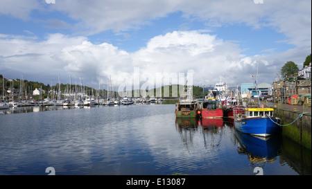 Tarbert Harbour, Scotland -1 - Stock Photo