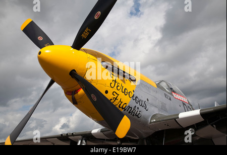 P-51 mustang Ferocious Frankie Based at Duxford airfield, Cambridgeshire,England - Stock Photo