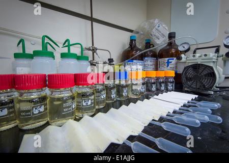 Laboratory Bench With Bottles & Jars - Stock Photo