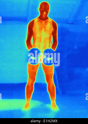 Front view thermal image of young man training with barbells. The image shows the heat produced by the muscles - Stock Photo