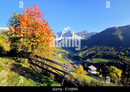 Autumn in Val di Funes valley with the Geisler Peaks in the Dolomites, Val di Funes, Bolzano province, Trentino - Stock Photo