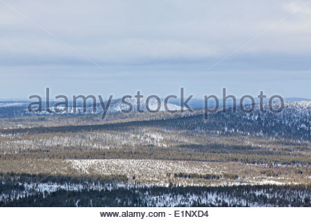 Salla fell in Russia - Stock Photo
