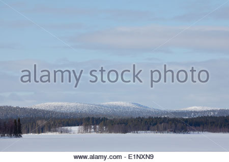 Rohmoiva fell in Russia - Stock Photo