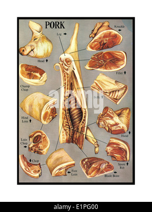 Illustration of variety of butchered Pork meat cuts and joints - Stock Photo