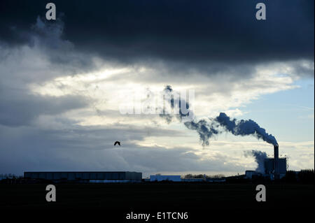 Smoking chimney against the light with a raincloud - Stock Photo