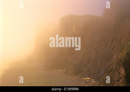 Cliffs in fog at sunrset along the Bay of Fundy, Cape d' Or, Nova Scotia, Canada - Stock Photo