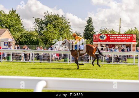 Salisbury Racecourse is a flat racecourse in the United Kingdom featuring thoroughbred horse racing, 3 miles southwest - Stock Photo