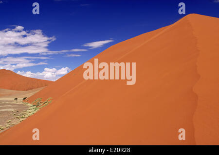 Dune 45, Namib-Desert, Namibia - Stock Photo