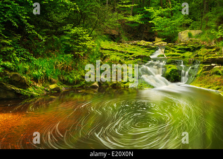 A small waterfall in lush forest in the Ardennes, Belgium. - Stock Photo