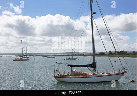 A Tradewind 40 yacht moored on the Beaulieu river in Hampshire, England, UK. Other yachts in the background - Stock Photo