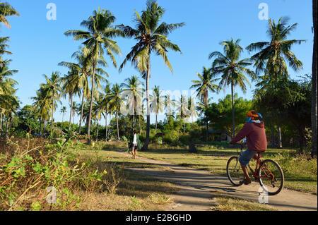 Indonesia, Lombok, Gili archipelago, Gili Air, inside the island under the coconut trees - Stock Photo