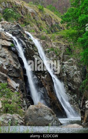 Swaziland Hhohho district Ezulwini valley (valley of Heaven) Mantenga Nature Reserve the Mantenga Falls - Stock Photo