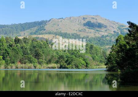Swaziland Hhohho district Ezulwini valley (valley of Heaven) Mlilwane Wildlife Sanctuary - Stock Photo