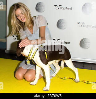 Dogs Trust Honours held at Home House - Arrivals  Featuring: Donna Air Where: London, United Kingdom When: 22 Jul - Stock Photo