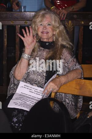 Cops 4 Causes: Heroes Helping Heroes 9/11 Tribute Concert Event at House Of Blues on Sunset  Featuring: Connie Stevens - Stock Photo
