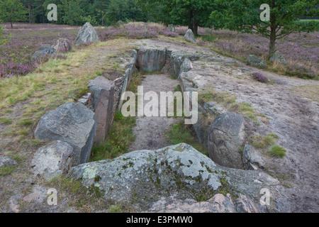 Oldendorfer Totenstatt. Neolithic burial mound near Amelinghausen. Lueneburg Heath, Lower Saxony, Germany - Stock Photo
