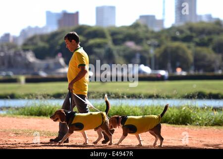 Sao Paulo, Brazil. 06th July, 2014. A man and his two dogs, all wearing Brazilian jerseys, take a walk in the Ibirapuera - Stock Photo