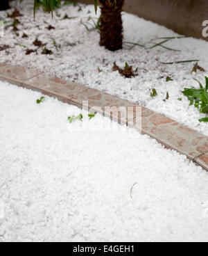 Settled hailstones after a sudden heavy storm in the garden. - Stock Photo
