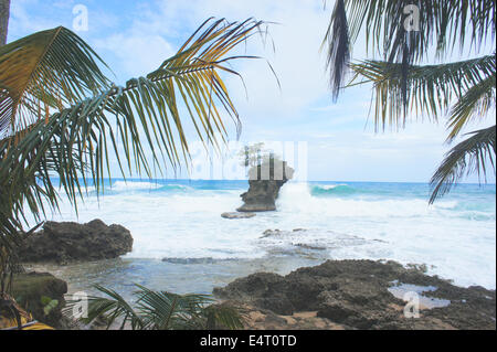 Impressions from sunny and green Costa Rica - Stock Photo