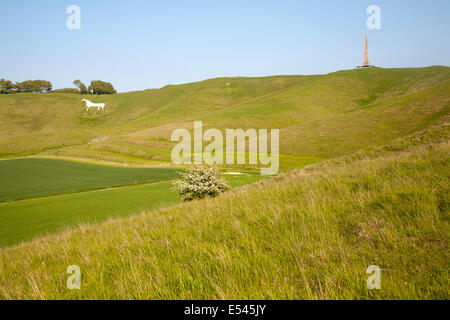 Scarp slope of White Horse on Cherhill Down and Lansdowne monument, Cherhill, Wiltshire, England - Stock Photo