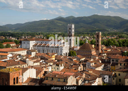 View over city from Torre Guinigi to Duomo di San Martino, Lucca, Tuscany, Italy, Europe - Stock Photo