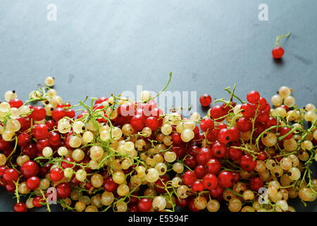 Summer berries - red and white currants, slate background - Stock Photo