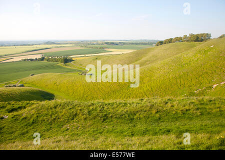 Summer view of arable fields and chalk landscape from Cherhill Down escarpment, Wiltshire, England - Stock Photo