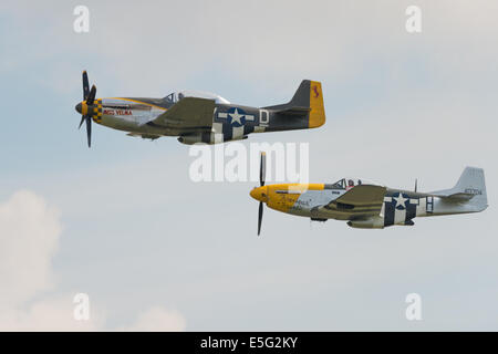 Ferocious Frankie and Miss Yelma Mustang P51D Mustangs flying at Duxford flying legends airshow 2014 - Stock Photo