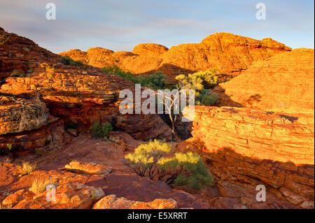 Kings Canyon, Northern Territory, Australia - Stock Photo