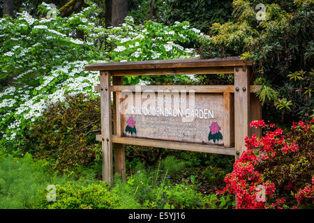 Hendricks Park and Gardens in Eugene, Oregon, USA. - Stock Photo