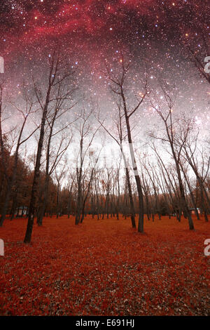 spring night infrared photography. Elements of this image furnished by NASA - Stock Photo