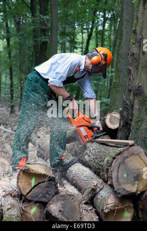 timber industry,sawing,forest work,forester - Stock Photo