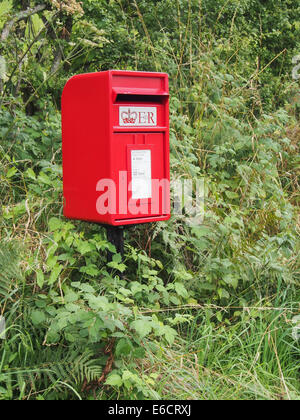A red Royal mail post box in a rural setting - Stock Photo
