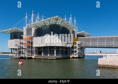 Lisbon, Portugal - August 07, 2014: Lisbon Oceanarium, the second largest oceanarium in the world and the biggest - Stock Photo