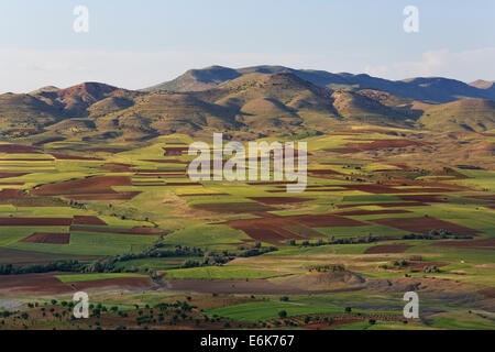 Field landscape in Gercüş, Batman Province, Tur Abdin, Southeastern Anatolia Region, Anatolia, Turkey - Stock Photo