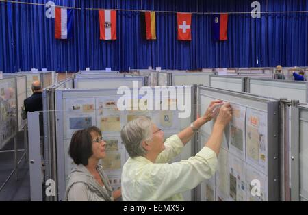 Members of the multilateral stamp exhibition 2014 inlay their stamps in Haldensleben, Germany, 27 August 2014. The - Stock Photo