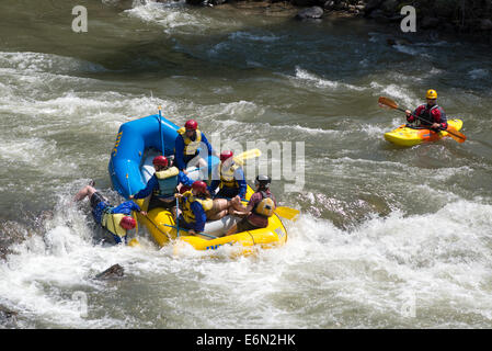 Person falling out of raft in a rapid on the South Fork of the Payette River, Idaho. - Stock Photo