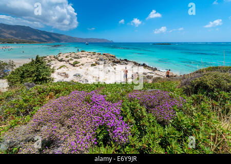 ELAFONISSI, CRETE, GREECE - July 24, 2014: Tourists At The Famous Pink Sand Beach Of Elafonissi ( Elafonisi ) In - Stock Photo