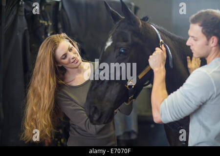 Male and female stablehands adjusting halter on horse in stables - Stock Photo